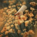 تصاویر نگارخانه متن نگار  -  تنهایی , تنهایی, دخترونه, گل