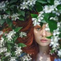 تصاویر نگارخانه متن نگار  -  گل , گل, دخترونه