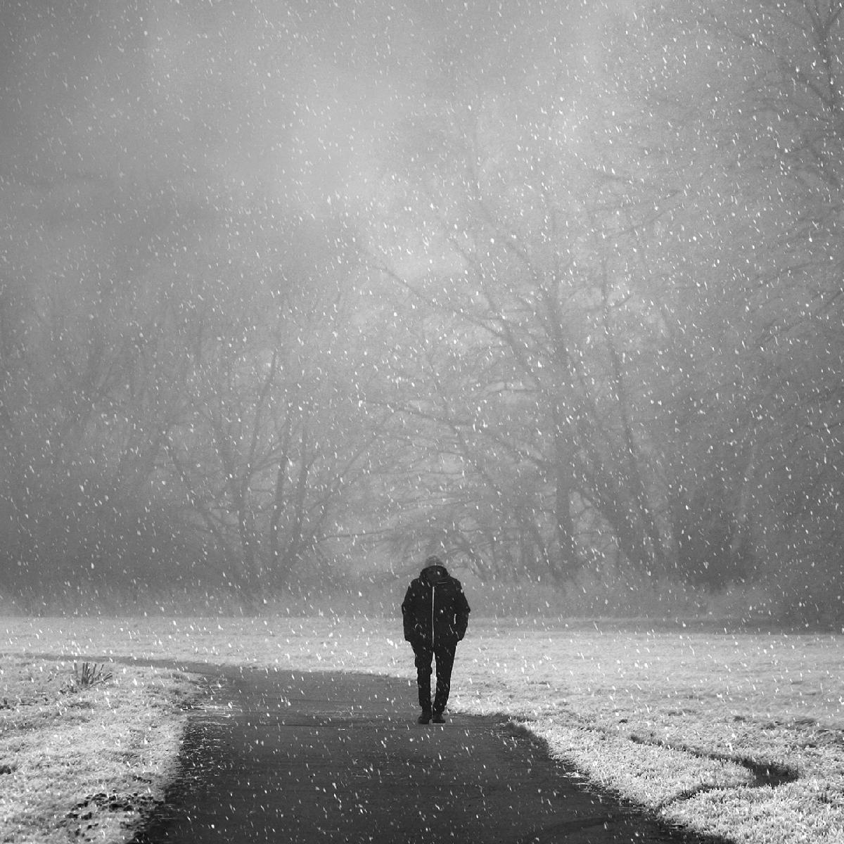 تصاویر نگارخانه متن نگار , تنهایی