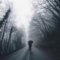 تصاویر نگارخانه متن نگار  -  تنهایی , تنهایی, زمستون