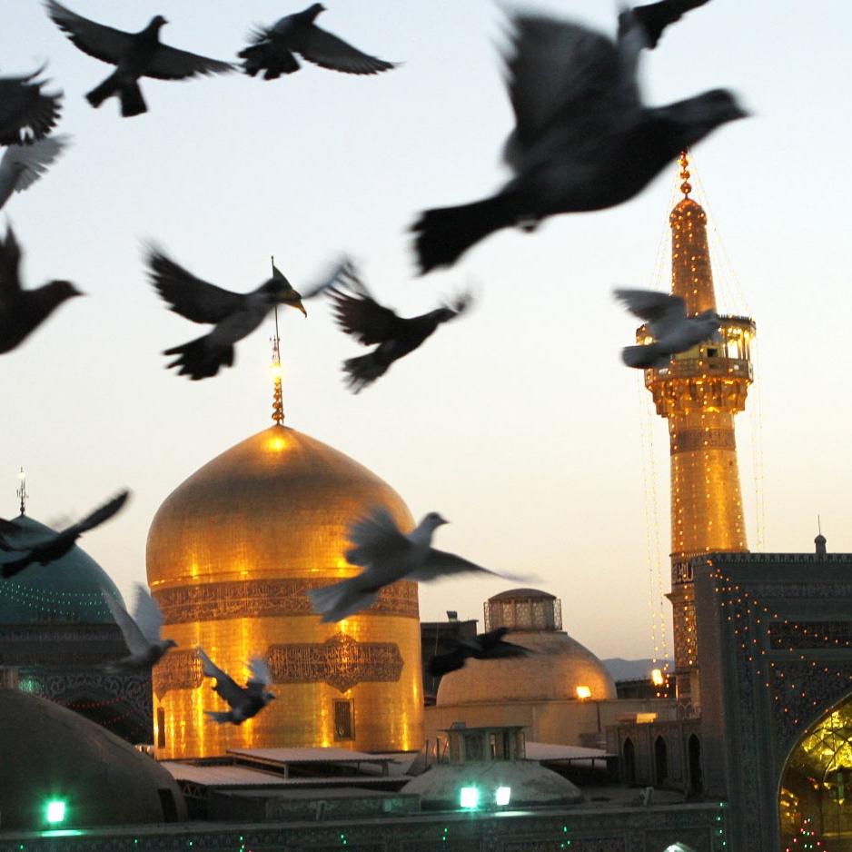 تصاویر نگارخانه متن نگار , امام رضا (ع)