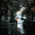 نگارخانه متن نگار 845KB تبریز، ایران محمد امیراحمدی  تنهایی