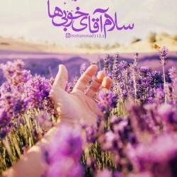 برترینها متن نگار محمد ۳۱۳