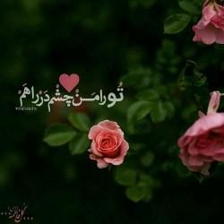 تصاویر نگارخانه متن نگار , #اللهم_عجل_لولیک_الفرج ????