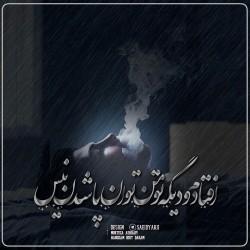 برترینها متن نگار سعید. م