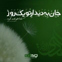 تصاویر نگارخانه متن نگار , جان  به دیدارِ  تو یک روز فدا خواهم كرد...  #سعدی