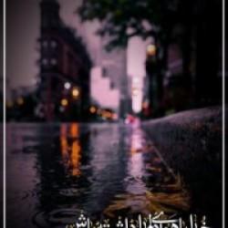 برترینها متن نگار زهرا حمیدی