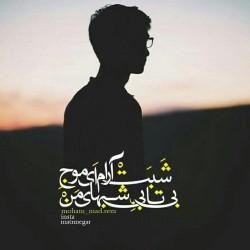 برترینها متن نگار محمدرضا
