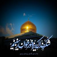 برترینها متننگار محمد حسین محمدی