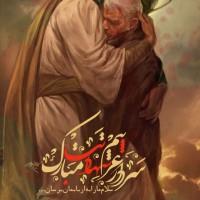 برترینها متن نگار حسین محدر