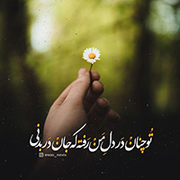 تصاویر نگارخانه متن نگار , تو چنان در دل من رفته که جان در بدنی...   #سعدی