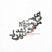 برترینها متن نگار محمد طرفی جابری