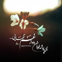 تصاویر نگارخانه متن نگار , ای پادشه خوبان داد از غم تنهایی🍂 دل بیتوبهجانآمد وقتاستکهبازآیی🍃 #حافظ