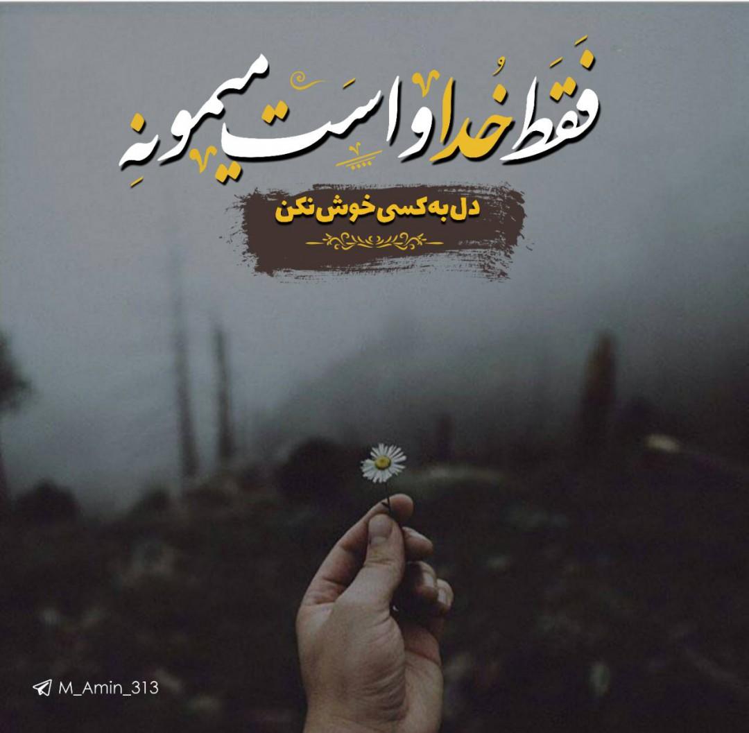 برترینها متن نگار محمدامین خانمیرزایی