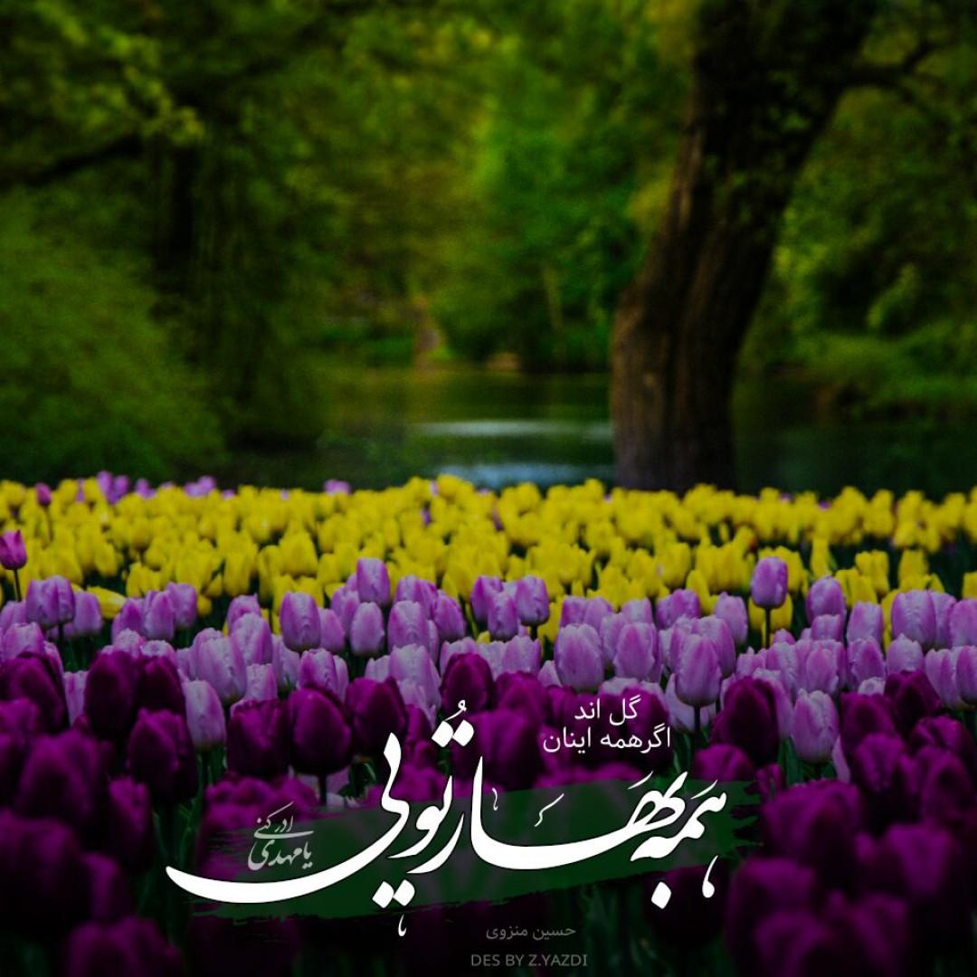 برترینها متن نگار یزدی