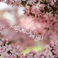 Tops Matnnegar علیرضا افشار ✅