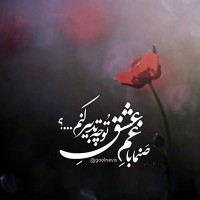 تصاویر نگارخانه متن نگار , صنما با غم عشق تو چه تدبیر کنم...؟!  #حافظ