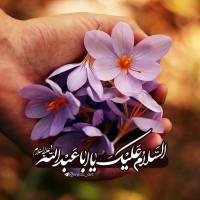 برترینها متننگار imaa_art ✅