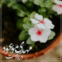 برترینها متننگار فاطمه احمدنژاد ✅