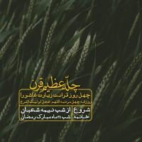 برترینها متن نگار علی مهدی منصوری
