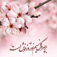 تصاویر نگارخانه متن نگار , بر چهره گل نسیم نوروز خوش است...??
