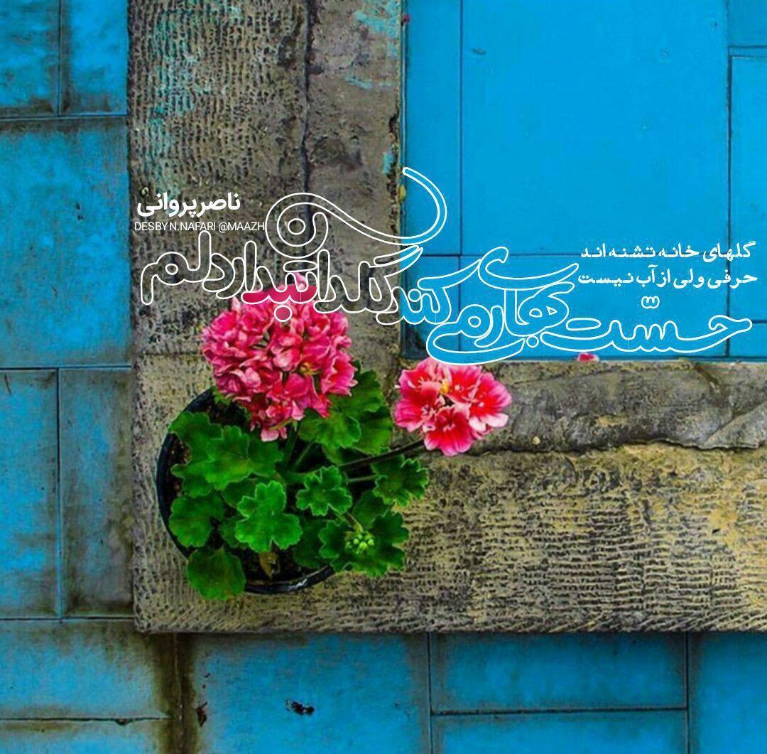 طرح | ناصرپروانی گلهای خانه تشنه اند حرفی ولی از آب نیست حسّت بهار میکند گلدان تبدار دلم