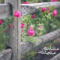 طراح: عسل اسعدی, عید بیاید روَد عید تو ماند ابد  #مولانا