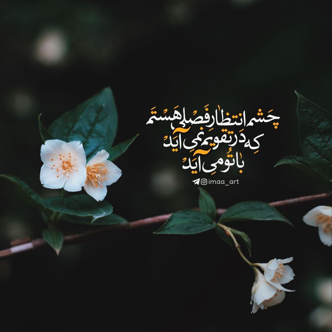 imaa_art ✅ - چشم انتظار فصلی هستم که در تقویم نمیآید با تو میآید... ??