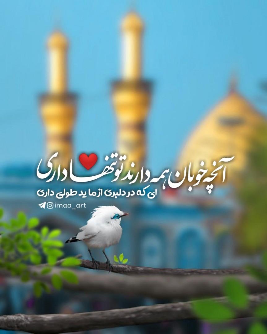 imaa_art ✅ - ای که در دلبری از ما ید طولی داری آن چه خوبان همه دارند تو تنها داری