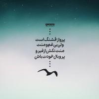 تصاویر نگارخانه متن نگار , پرواز قشنگ است ولی بی غم و منت... #اقبال_لاهوری