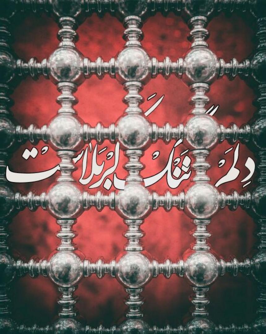 Agha sayyed - حس گفتن شعرى جدید نیست یک مصرع و خلاصه... دلم تنگ ڪربلــ❤️ـــاســت...