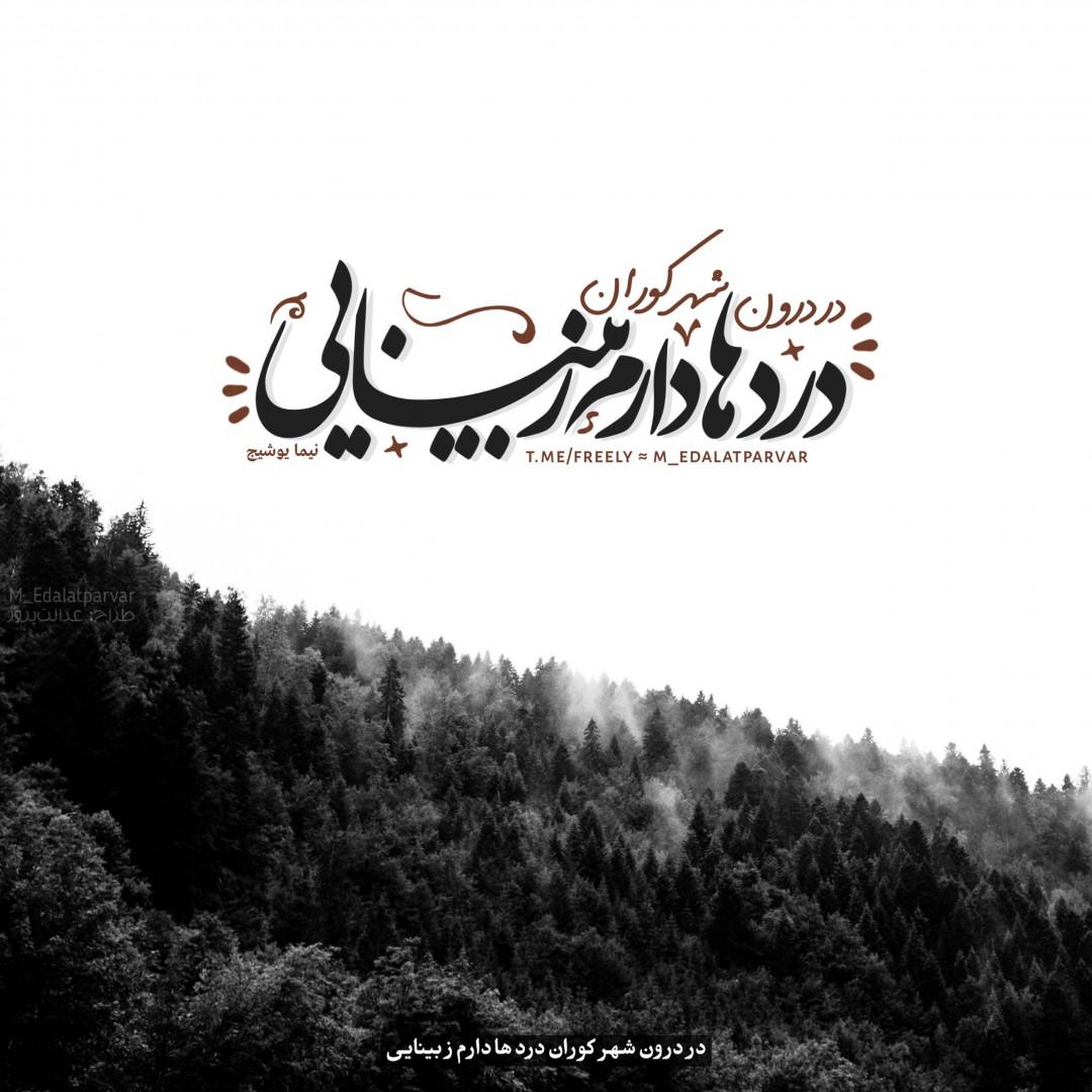 برترینها متن نگار محمد عدالت پرور