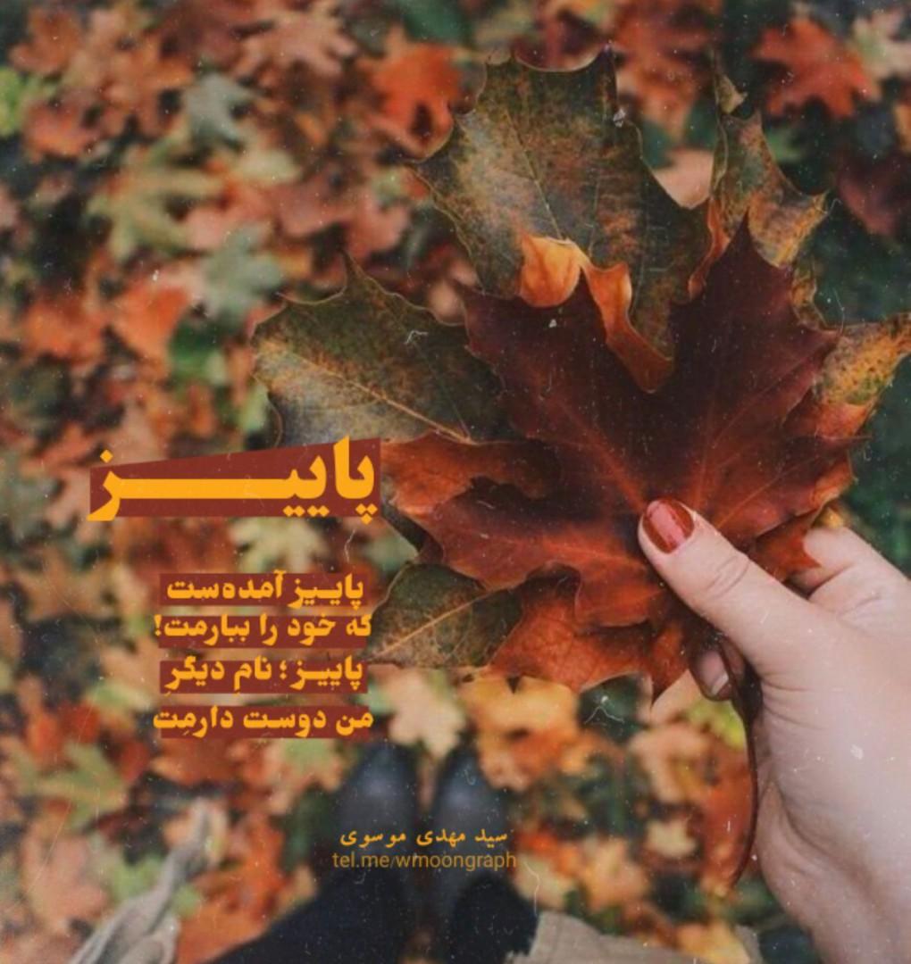 مونگراف - پاییز آمدهست که خود را ببارمت! پاییز ؛ نامِ دیگرِ «من دوسـت دارمِت»!  #سیدمهدی_موسوی #مونگراف