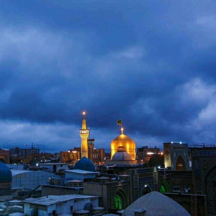 نگارخانه متن نگار   امام رضا (ع)