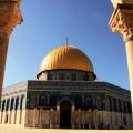 نگارخانه متن نگار 1,014KB  فلسطین