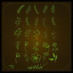 مجموعه برچسب گلبرگ